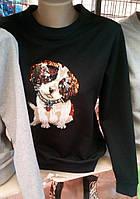 Свитшот с пайетками Щенок 44-50, фото 1