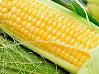 Кукуруза Оверленд F1 Syngenta 100000 семян