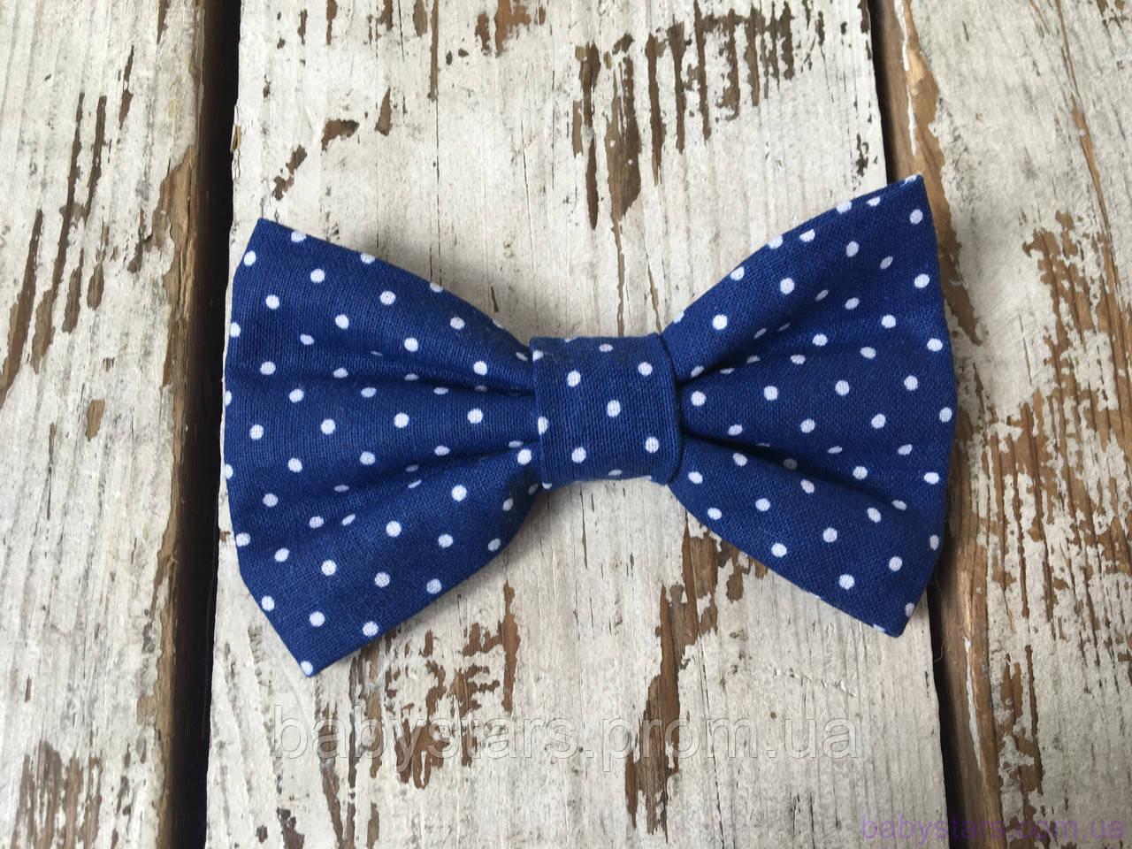 Бабочка галстук, синяя в точку