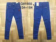 Джинсовые брюки для девочек оптом, Grace, 134-164 см,  № 81660, фото 1