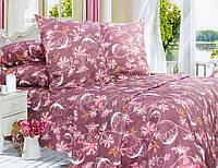 Комплект постельного белья Двуспальный, Поплин (2-х сп.ЕПП0006)