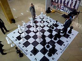 Большие шахматы для парков. Высота короля 900 мм. Стеклопластик.