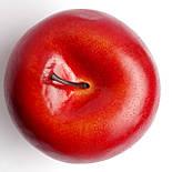 Штучне яблуко бордове кругле 7.5 див., фото 3