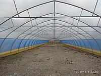 Теплицы фермерские из пленки на заказ 10х50 м