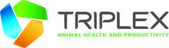 Фирма «Триплекс»