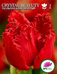 Тюльпан Crystal Beauty