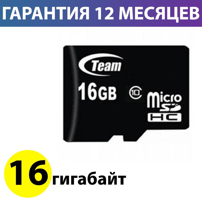 Карта памяти micro SD 16 Гб класс 10, Team (TUSDH16GCL1002), память для телефона микро сд