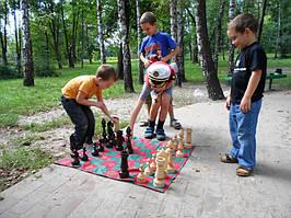 Шахматы детские, деревянные для улицы.