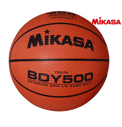 Мяч баскетбольный Mikasa BDY500, фото 2