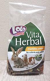 Lolopets HERBAL Ласощі овочеві для гризунів, 100 г