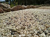 Каменный ковер. Золотой берег. Галька крупная., фото 1