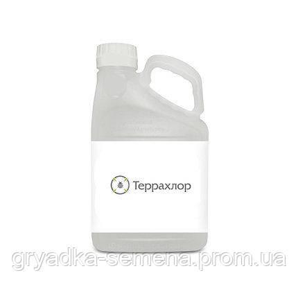 Инсектицид Терра Вита (Terra Vita) Террахлор 480 - 20 л, КЭ