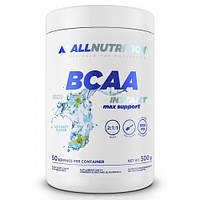 AllNutrition BCAA MAX Support Instant 500 g Малина