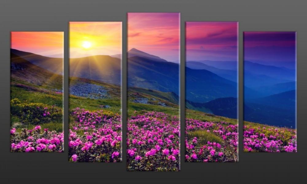 Модульная картина Луг на закате 71х128 см (HAB-154)