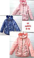 Куртка для девочек оптом, Setty Koop, 8-16 лет,  № AP806, фото 1