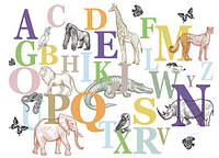 Фотообои для декора стен детские, буквы разные текстуры , индивидуальный размер