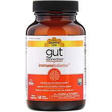 "Комплекс для поддержки иммунитета Country Life, Gut Connection ""Immune Balance"" (60 капсул)"