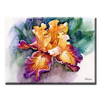 Картина Iris Glozis D-044 70 х 50 см (D-044), фото 1
