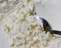 Яичный белок сухой  альбумин Ovopol, Польша