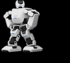 Роботы программируемые