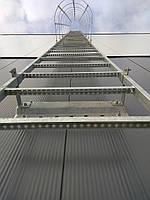 Вертикальная пожарная лестница с ограждением тип П-1, фото 1