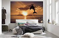 """Флизелиновые Фотообои """"Дельфин"""" от производителя за 1 день. Любая картинка и размер. ЭКО-обои"""