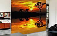 """Флизелиновые Фотообои """"Африка"""" от производителя за 1 день. Любая картинка и размер. ЭКО-обои"""