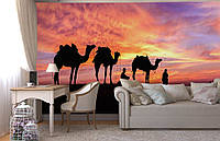 """Флизелиновые Фотообои """"Верблюды"""" от производителя за 1 день. Любая картинка и размер. ЭКО-обои"""