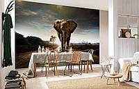 """Флизелиновые Фотообои """"Слон"""" от производителя за 1 день. Любая картинка и размер. ЭКО-обои"""