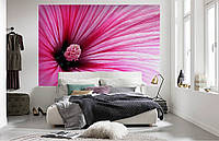 """Флизелиновые Фотообои """"Цветок"""" от производителя за 1 день. Любая картинка и размер. ЭКО-обои"""