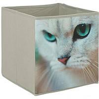 Коробка складная AUG-015 CAT 280x270x270 мм, фото 1