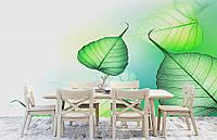 """Флизелиновые Фотообои """"Листья"""" от производителя за 1 день. Любая картинка и размер. ЭКО-обои"""