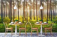 """Флизелиновые Фотообои """"Утро в лесу"""" от производителя за 1 день. Любая картинка и размер. ЭКО-обои"""