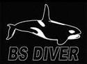 РАЗМЕРНАЯ ТАБЛИЦА BS Diver