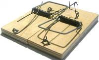 Мышеловка деревянная, 105х45х8мм