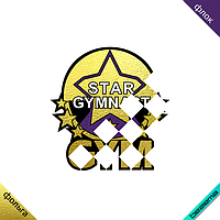 Декор на регланы Star gymnastic