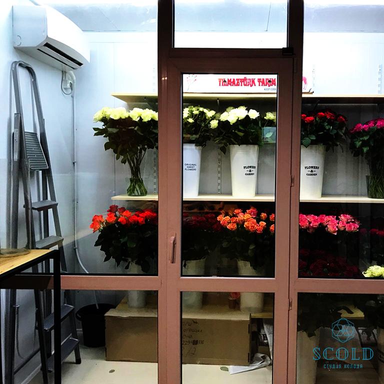 Холодильная камера демонстрации цветочной продукции в городе Павлоград