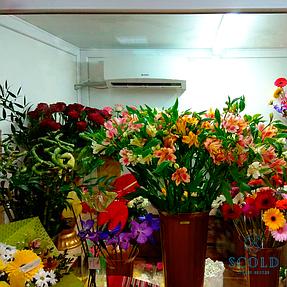 Холодильная камера демонстрации цветочной продукции в городе Днепр 2