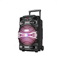 Колонка на аккумуляторе с микрофоном Ailiang UF-1318AK-DT