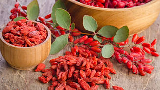 Нефасованные ягоды годжи (минимальная отгрузка 5,00 кг)