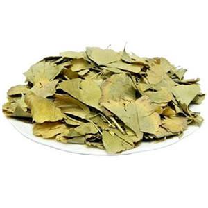 Гинкго (листья) (минимальная отгрузка 0,5 кг)
