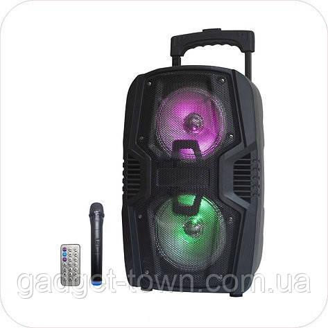 Колонка портативная с микрофоном LIGE-B82K / 80W (USB/FM/Bluetooth)