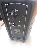 Колонка портативная с микрофоном LIGE-B82K / 80W (USB/FM/Bluetooth), фото 4