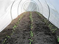 """Парник """"Фермер - Подснежник"""", плотность 30г/м.кв, длина 4м"""