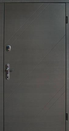 Уличные входные двери Редфорт Альфа ПВХ винорит (vinorit), фото 2