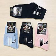 Шкарпетки дитячі демісезонні бавовна Adidas - Туреччина розмір 18-20 (29-31)