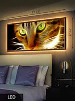 LED Картина, Пламенный кот