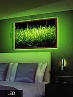 LED Картина Трава