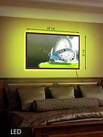 LED Картина Белая бабочка