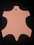 Краска для кожи Felice Персик 25 мл F056, фото 2